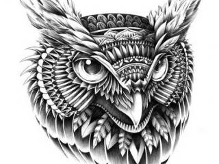 maori-baykus-dovmeleri