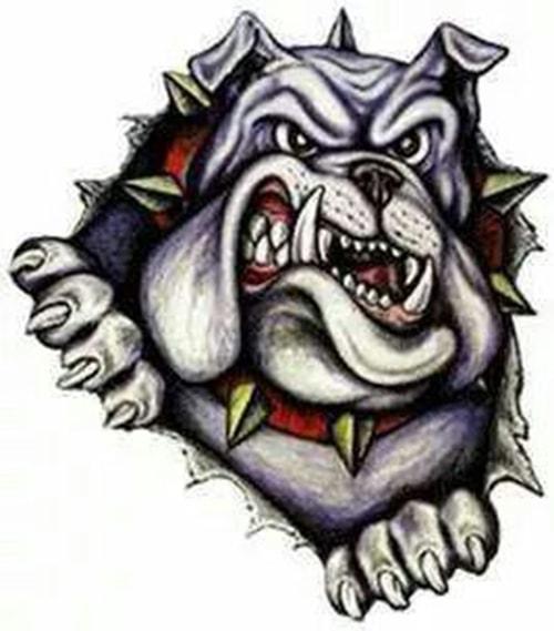 new-school-pitbull-dovme-modeli